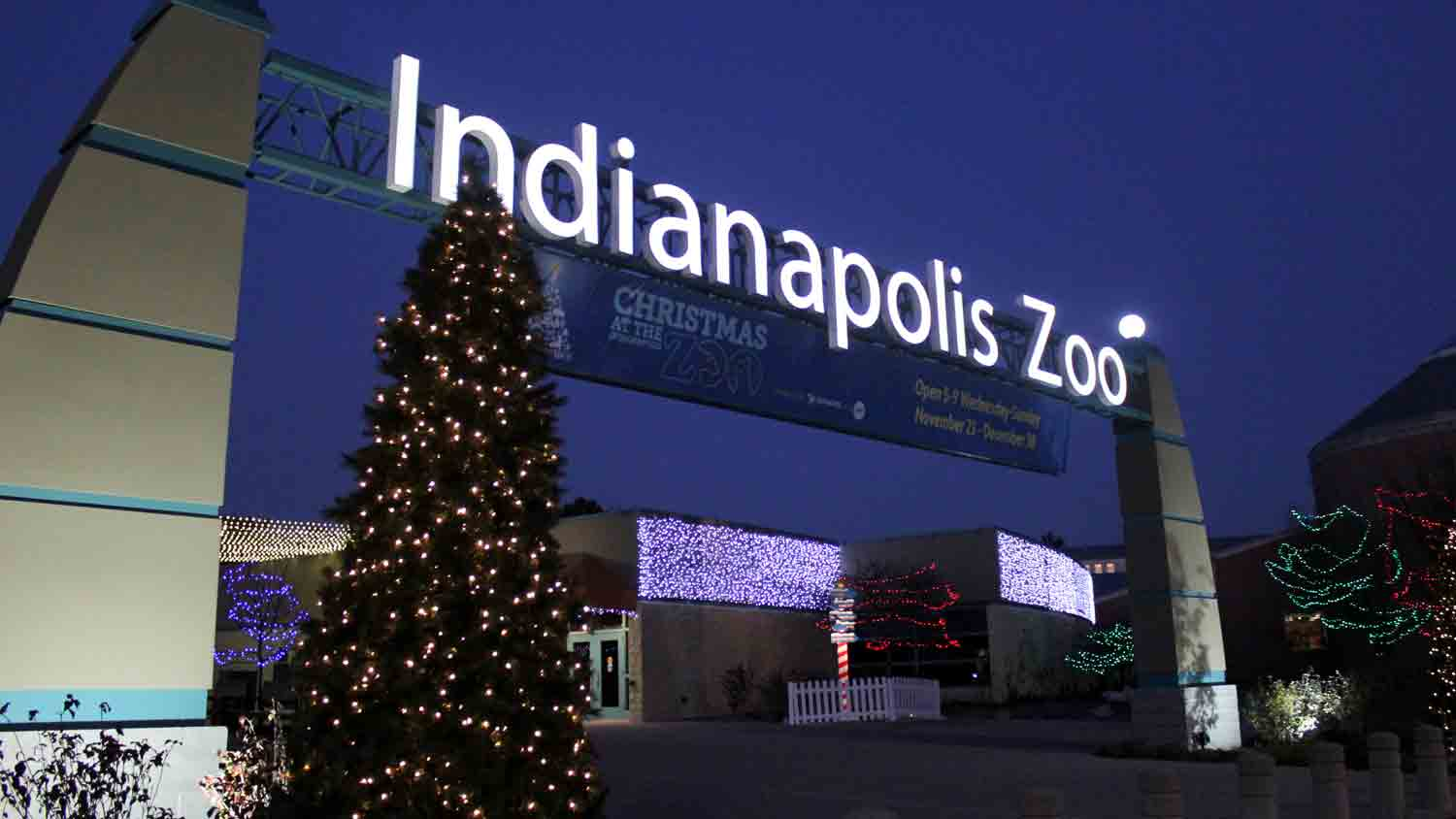 Christmas at the zoo 3