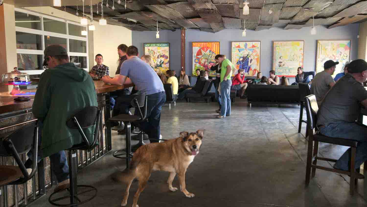 Fountain square brewery 3
