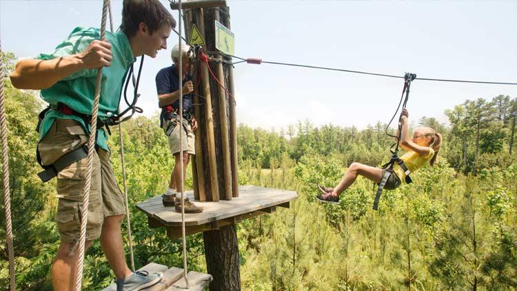 Go Ape Treetop Adventure 11