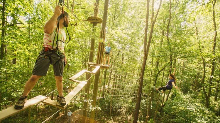 Go Ape Treetop Adventure 14