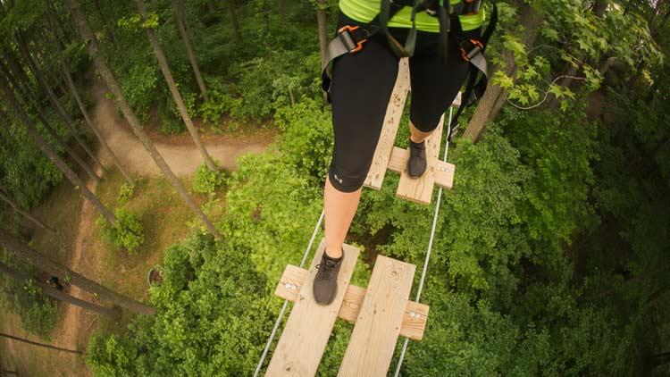 Go Ape Treetop Adventure 17
