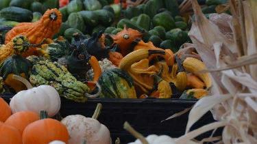Carmel Winter Farmers Market