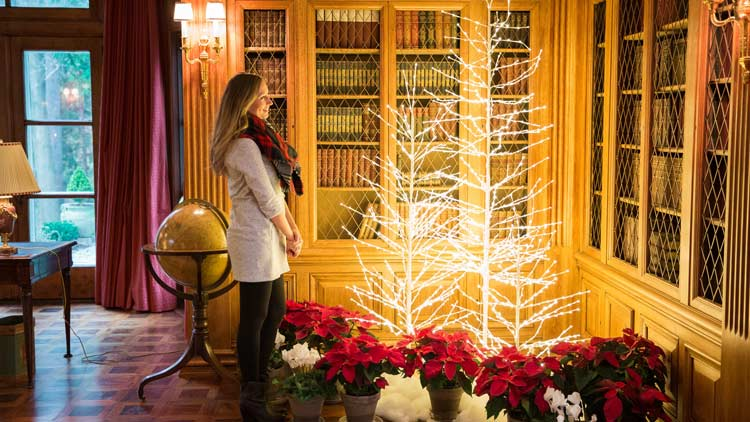 Christmas at Lilly House - Holiday in Bloom