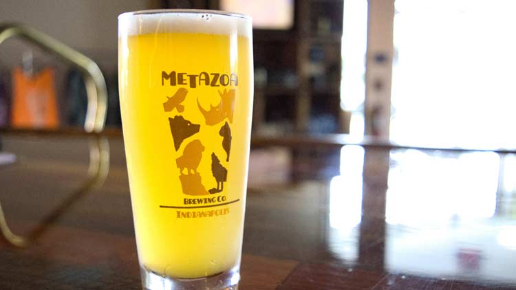 Metazoa Brewing Co. 4