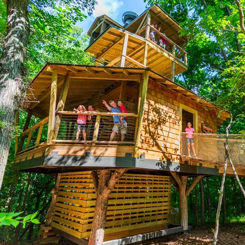 Nature lovers treetop