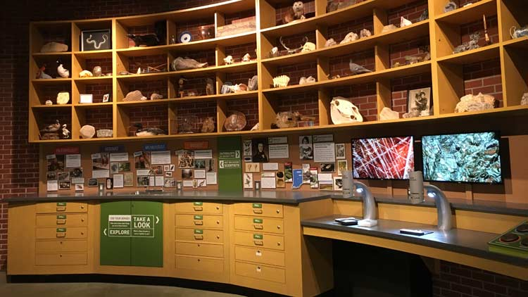 R.B. Annis Naturalist's Lab in the Indiana State Museum 1