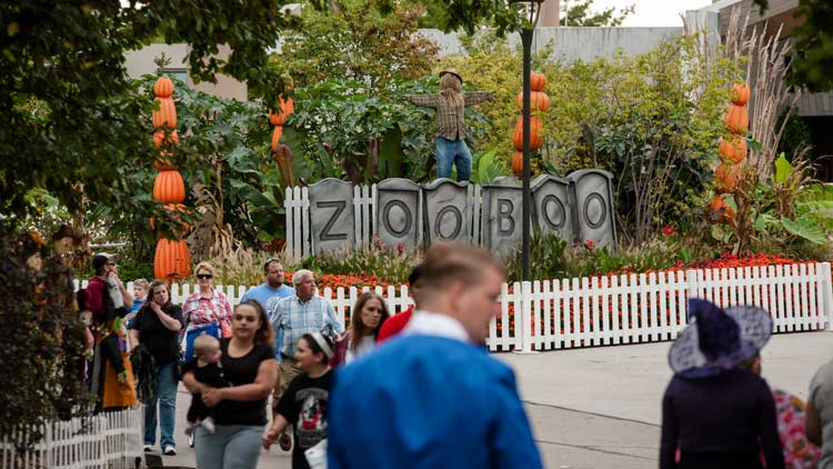 Halloween ZooBoo presented by Central Indiana Honda Dealers 10