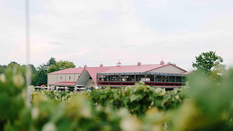 Daniel's Family Vineyard & Winery 10