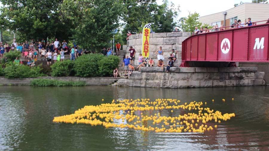 Broad Ripple Duck Race 2